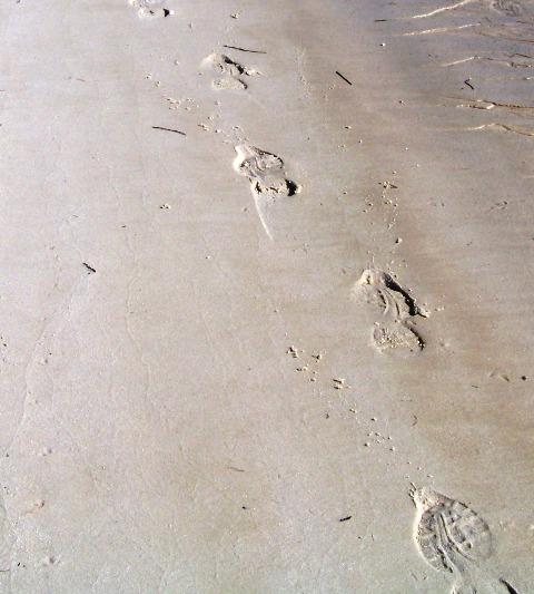 Footprints 1013